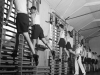Remedial Gymnastics. 1945